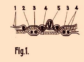 Mejoras en la fabricaci n de alfombras de felpa o terciopelo for Alfombra terciopelo