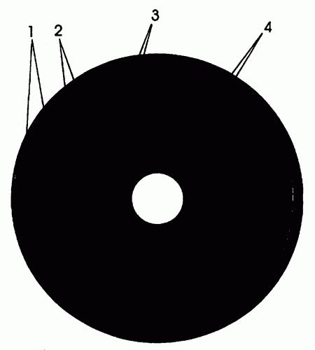 SISTEMA DE PROTECCION DE SOFTWARE DE CD-ROM.