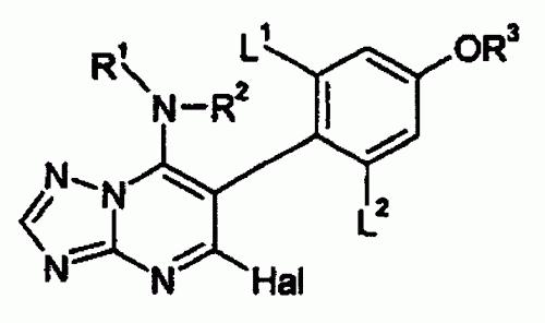6-(2-HALO-4-ALCOXIFENIL)-TRIAZOLPIRIMIDINAS FUNGICIDAS.