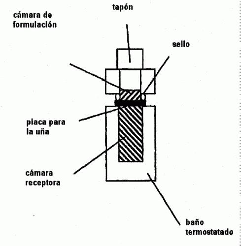 SALES MALICAS DE ADICION ACIDA DE TERBINAFINA.