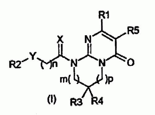 DERIVADOS DE 2-PIRIDINIL Y 2-PIRIMIDINIL-6,7,8,9-TETRAHIDROPIRIMIDO(1 ,2-A)PIRIMIDIN-4-ONA SUSTITUIDOS CON HETEROARILO.