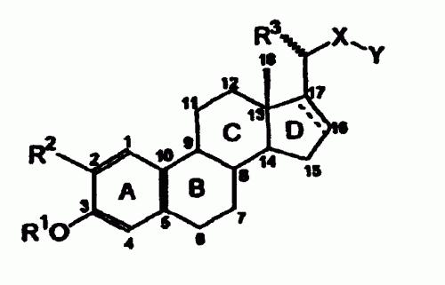 DERIVADOS DE COLA-1,3,5(10)-TRIENO Y PREGNA-1,3,5(10)-TRIENO 2-SUSTITUIDOS Y SU ACTIVIDAD BIOLOGICA.
