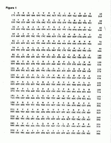 LIGANDO NATURAL DE GPRC CHEMR23 Y USOS DEL MISMO.