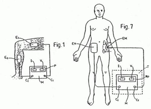 partes del cuerpo humano. partes del cuerpo humano.