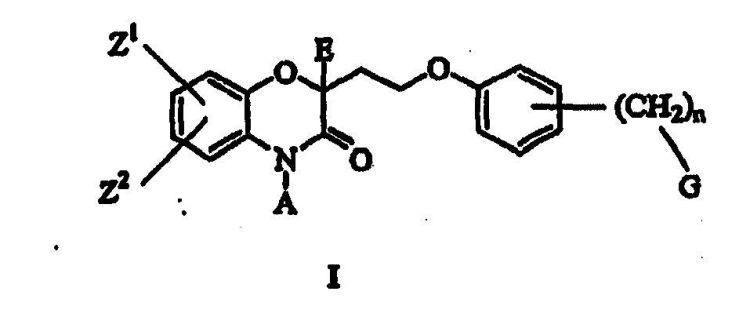 4H-BENZO(1.4)OXAZIN-3-INA BIOLOGICAMENTE ACTIVAS.