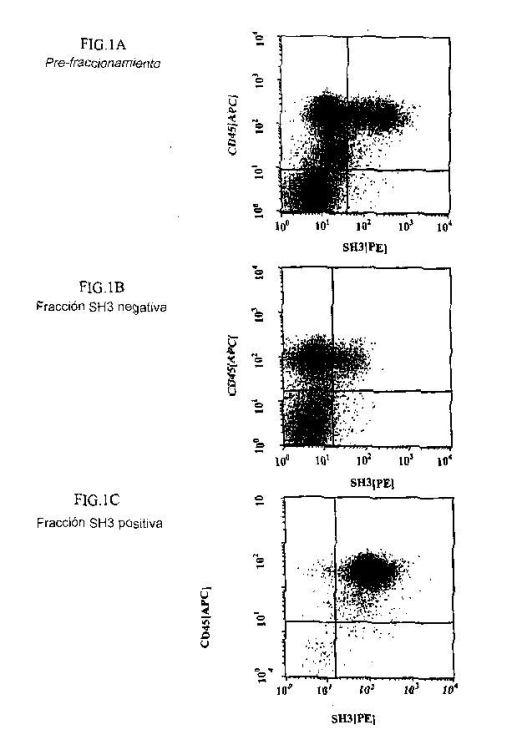CELULAS MADRE MESENQUIMATICAS CD45+ Y/O FIBROBLASTO+HUMANAS.