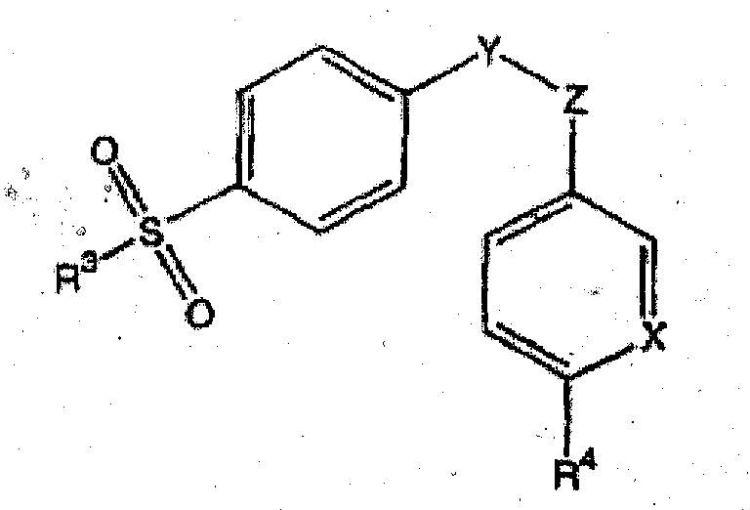 FORMULACION ORAL DE FUSION RAPIDA DE UN INHIBIDOR DE CICLOOXIGENASA-2.
