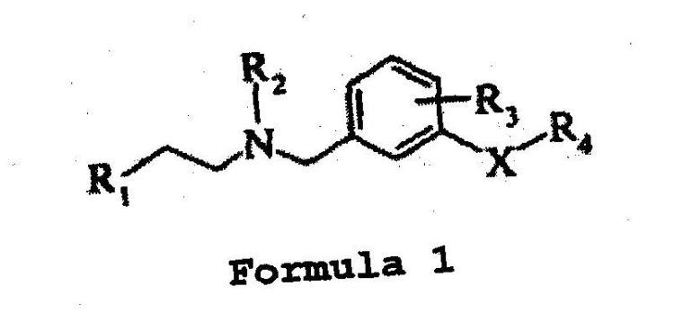 N-(2-ARILETIL) BENCILAMINAS COMO ANTAGONISTAS DEL RECEPTOR 5-HT6.