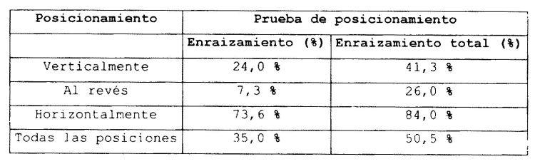PROCEDIMIENTO DE PRODUCCION DE CLONES DE ARBOLES JOVENES Y ESQUEJES.