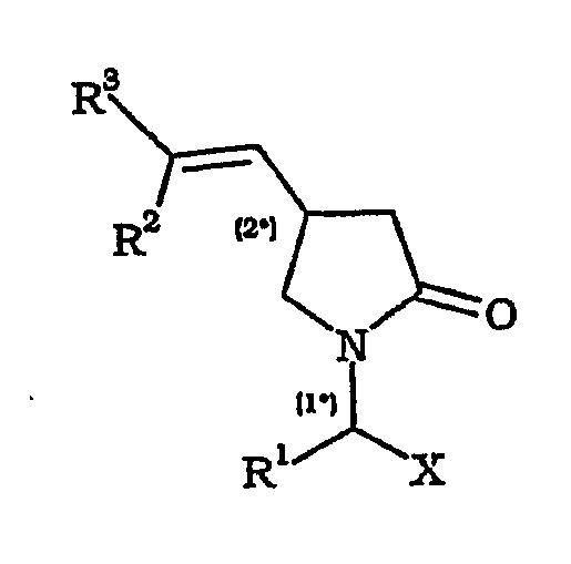 PROCEDIMIENTO PARA PREPARAR DERIVADOS DE 2-OXO-1-PIRROLIDINA POR ALILACION INTRAMOLECULAR.