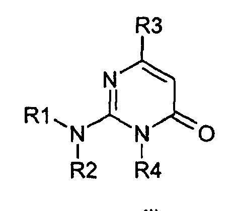 DERIVADOS DE 2-AMINO-3-(ALQUIL)-PIRIMIDONA COMO INHIBIDORES DE GSK3BETA.