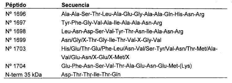 PRODUCCION Y SECRECION DE XILANASAS DE ACTINOMICETES EN UN HONGO FILAMENTOSO DE TRICHODERMA.