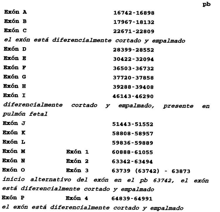 MOLECULAS MARCADORAS ASOCIADAS CON TUMORES PULMONARES.