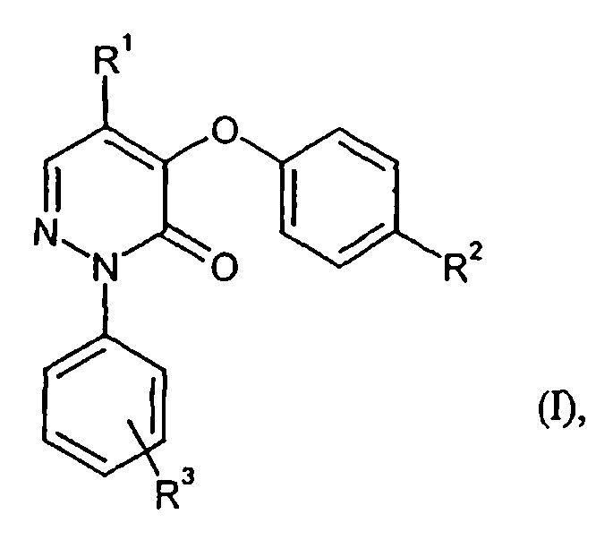 2-FENIL-3(2H)-PIRIDAZINONAS SUSTITUIDAS.