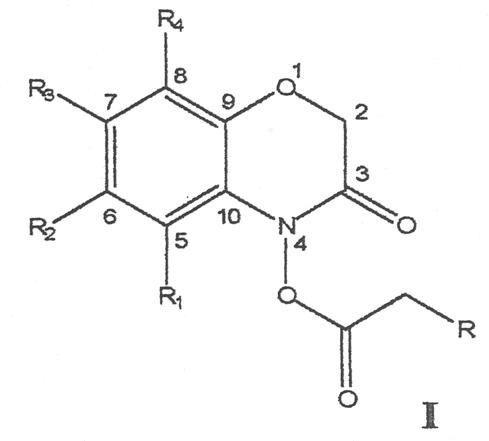 DERIVADOS 4-ACILOILOXI-2H-1,4-BENZOXACIN-3(4H)-ONA CON ACTIVIDAD FITOTOXICA.