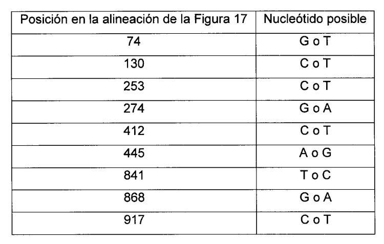 ANTIGENOS DE STREPTOCOCCUS PYROGENES Y FRAGMENTOS DE ADN CORRESPONDIENTES.