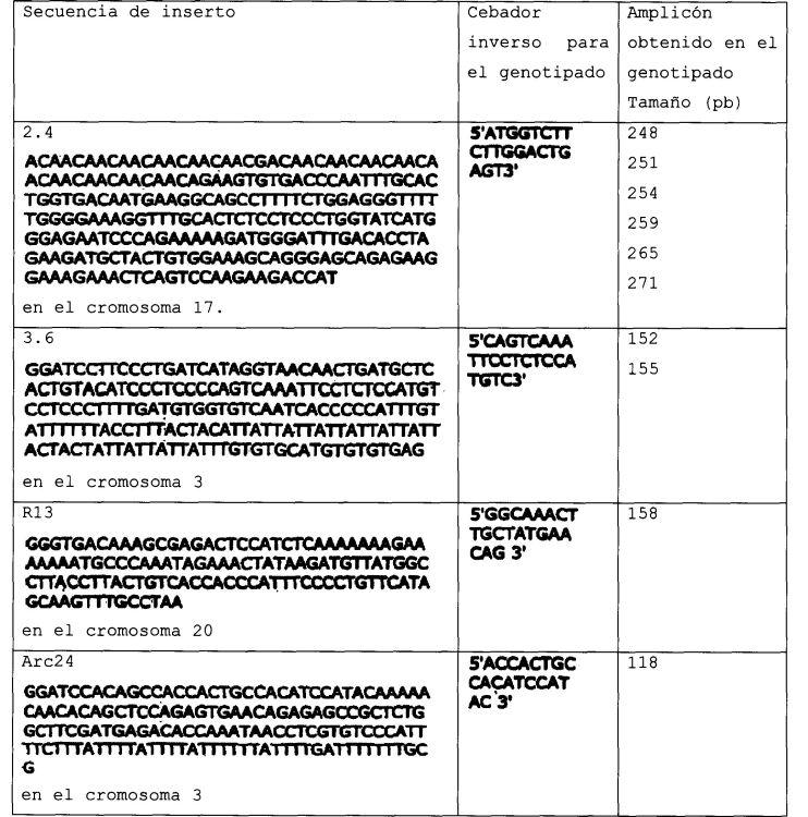 METODOS PARA SEPARACION DEPENDIENTE DE LA CONFORMACION BIDIMENSIONAL DE ACIDOS NUCLEICOS NO CIRCULARES.