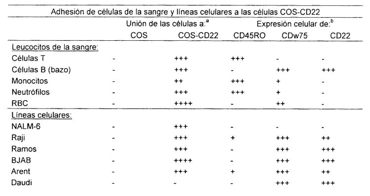 ANTICUERPOS MONOCLONALES QUE BLOQUEAN LA UNION DE LIGANDO CON EL RECEPTOR CD22 EN LAS CELULAS B MADURAS.