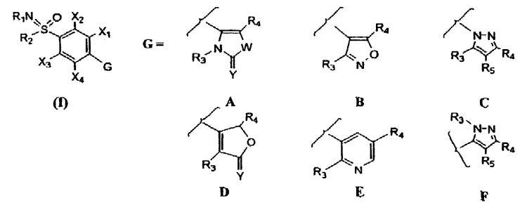 COMPUESTOS DE 4-(HETEROCICLIL)-BENZENOSULFOXIMINA PARA EL TRATAMIENTO DE LA INFLAMACION.