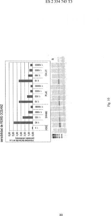 MÉTODO PARA LA DETECCIÓN DE ALELOS MUTANTES COMBINANDO PCR EN TIEMPO REAL Y REMS-PCR.