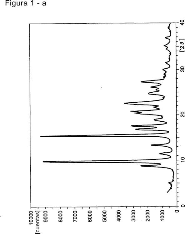 FORMAS POLIMORFAS DE N-(2,3-DIMETIL-5,6,7,8-TETRAHIDROFURO[2,3-b]QUINOLÍN-4-IL)-2-(2-OXOPIRROLIDÍN-1-IL)ACETAMIDA.