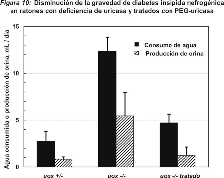CONJUGADOS DE PEG-OXIDASA DE URATO Y SU USO.