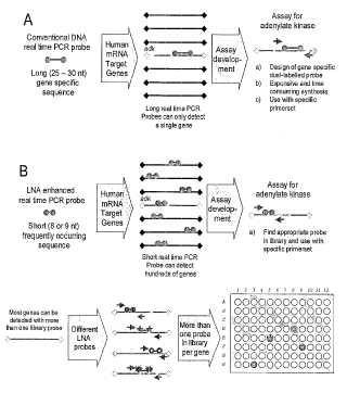 Sondas, bibliotecas y kits para análisis de mezclas de ácidos nucleicos y procedimientos para construirlos.