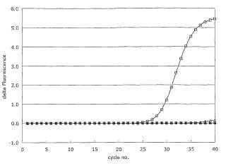 Procedimientos de cuantificación de microARN y ARN interferentes pequeños.
