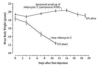 Tratamiento de tumores resistentes a múltiples fármacos mediante un conjugado de mitomicina C.