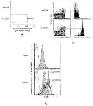 Métodos y composiciones para el tratamiento de infecciones persistentes.