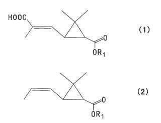 Método para la producción de 3,3-dimetil-2-(1-propenil)ciclopropanocarboxilato.