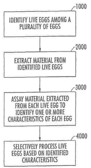 Procedimientos y aparatos para procesar selectivamente huevos que presentan características identificadas.