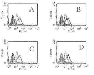 ANTICUERPOS PDF TIROIDEA ANTIPEROXIDASA