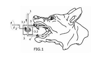 Dispositivo de separación de las mandíbulas de un animal.