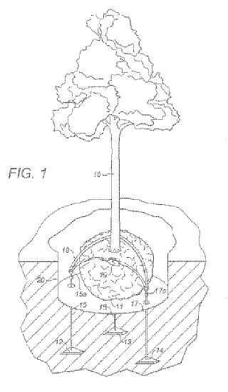 Equipo de anclaje de árboles y tensor de correa para su uso con el mismo.