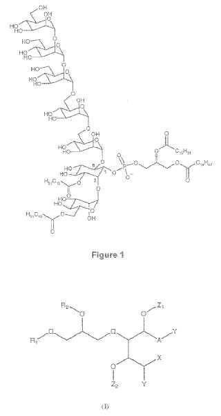 Análogos sintéticos manósidos fosfatidil-mio-inositol con actividad inhibidora de la respuesta inflamatoria.