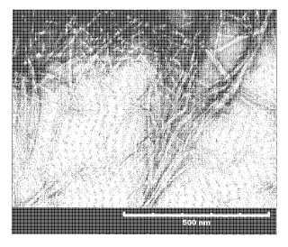 Procedimiento de fabricación de celulosa microfibrilada.