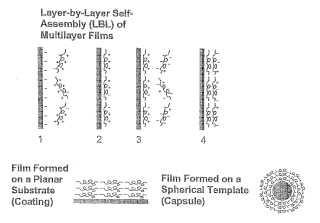 Películas de polipéptidos y métodos.