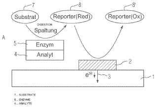Procedimiento y sistema para determinar la concentración de un complejo de analyte-enzima o conjugado de analyte-enzima, en especial para la detección electroquímica de los analytes.