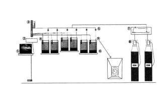 Sistema de inyección de CO2 para estudios ecotoxicológicos.