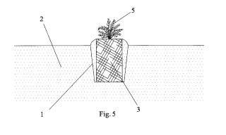 Procedimiento de cultivo en suelo mediante fibra de coco.