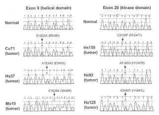 Mutaciones del gen de PIK3CA en cánceres humanos.