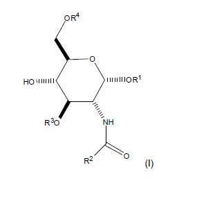 Uso de glicolípidos sulfatados como promotores del crecimiento neurítico, la mielinización e inhibidores de la proliferación de astroglia y microglia.