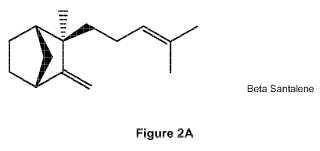 Procedimiento de producción de beta-santaleno.
