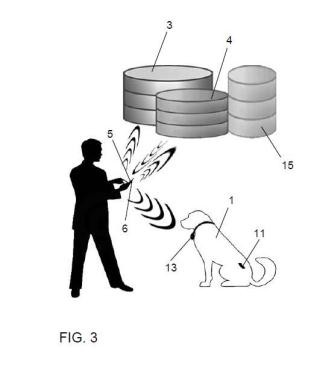 Instalación y método de identificación de una mascota animal.