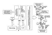 Procedimientos para tratar una enfermedad de tipo inflamatorio.