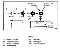 Composición farmacéutica con glicosaminoglicanos y su uso en tratamiento de úlceras crónicas.