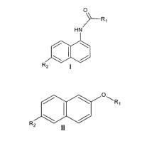 Procedimiento de obtención de nuevos derivados de naftaleno para el diagnóstico in vivo de la enfermedad de Alzheimer.