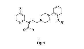 Compuestos radiomarcados como agentes de imagen de receptores de serotonina 5-HT1A.