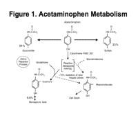 Acetaminofeno glucuronidado como un marcador de trastornos hepáticos.